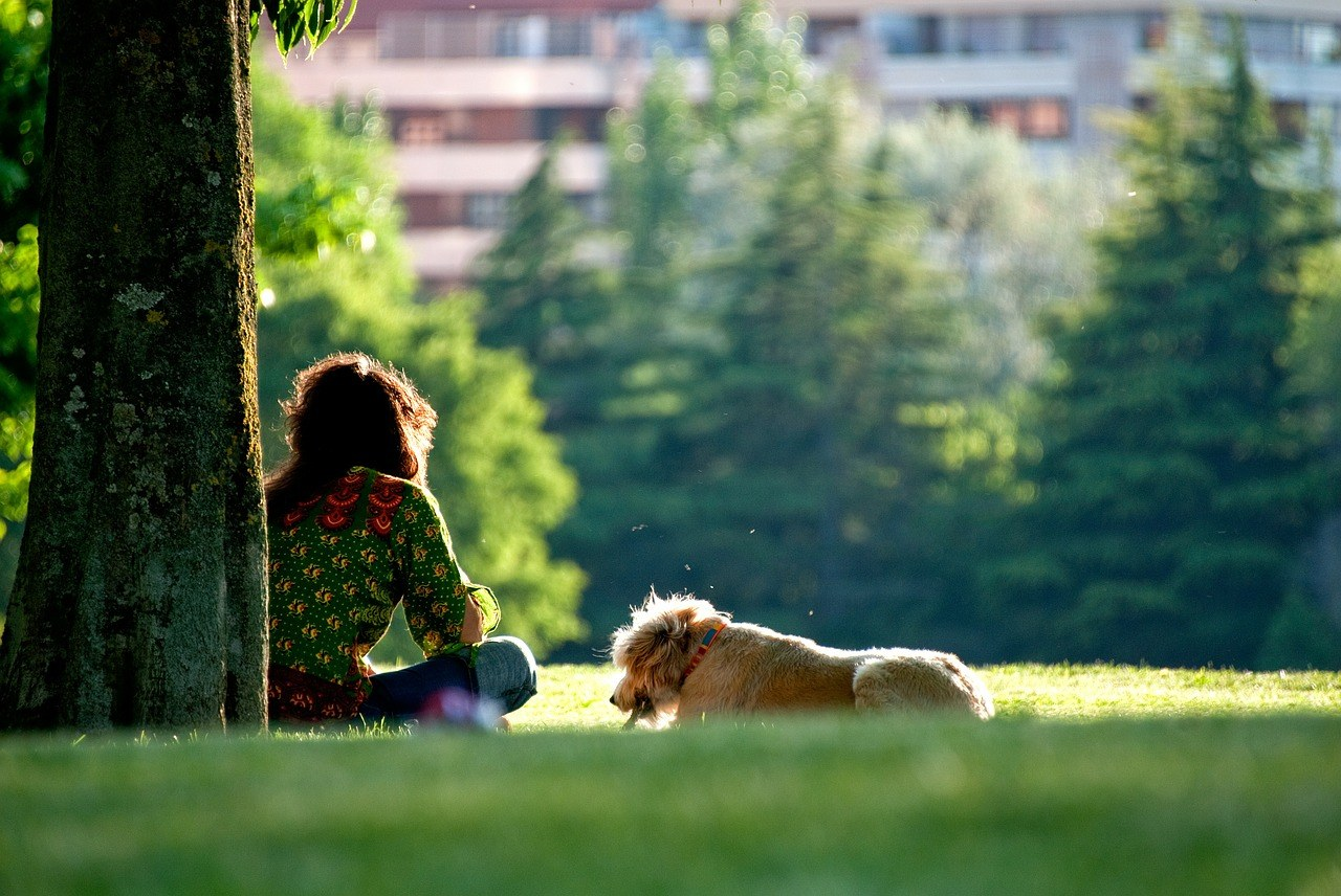 A woman and her dog sit on a lawn.