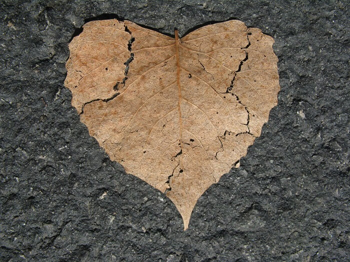 Question Clearly, how to overcome a breakup in a relationship