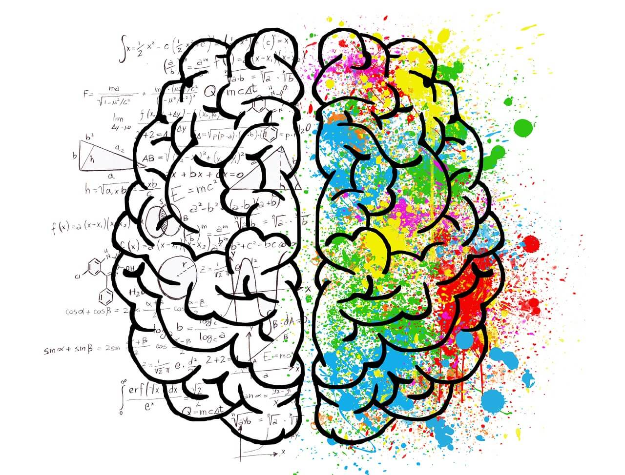 left and right brain psychology